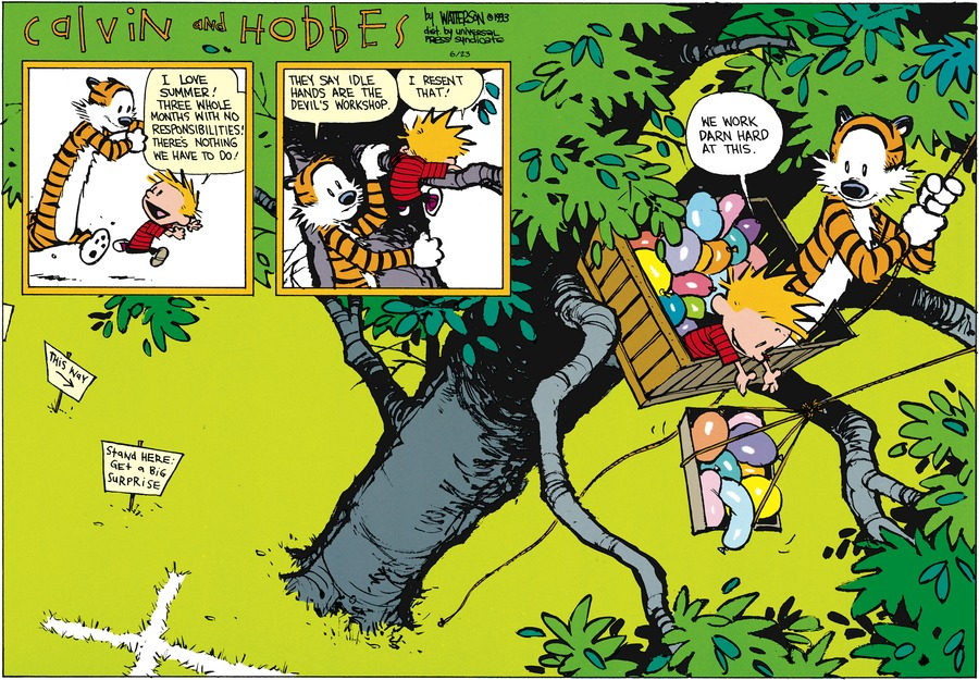 Calvin and Hobbes Comic Strip for June 23, 2013
