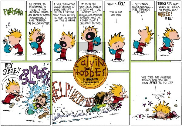 Calvin and Hobbes on Sunday July 26, 1992 Comic Strip