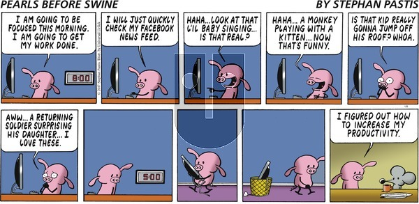 Pearls Before Swine - Sunday January 8, 2017 Comic Strip