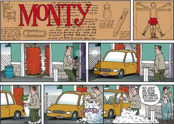 Monty on Sunday November 13, 2016 Comic Strip