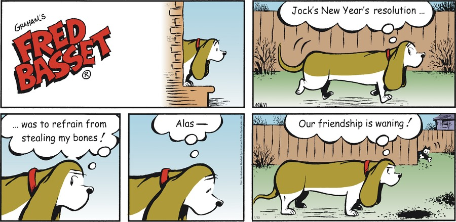 Fred Basset Comic Strip for January 10, 2021