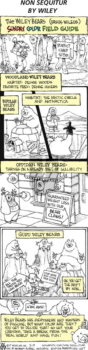 Non Sequitur on Sunday March 19, 2017 Comic Strip