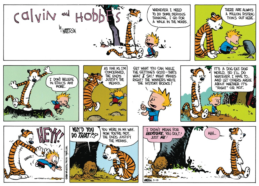 Calvin and Hobbes Comic Strip for May 18, 2014