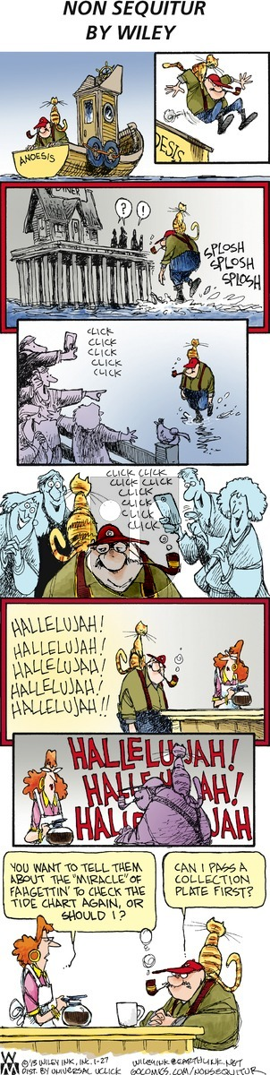 Non Sequitur - Sunday January 27, 2013 Comic Strip