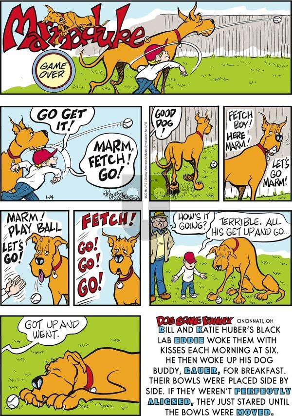 Marmaduke on Sunday January 14, 2018 Comic Strip