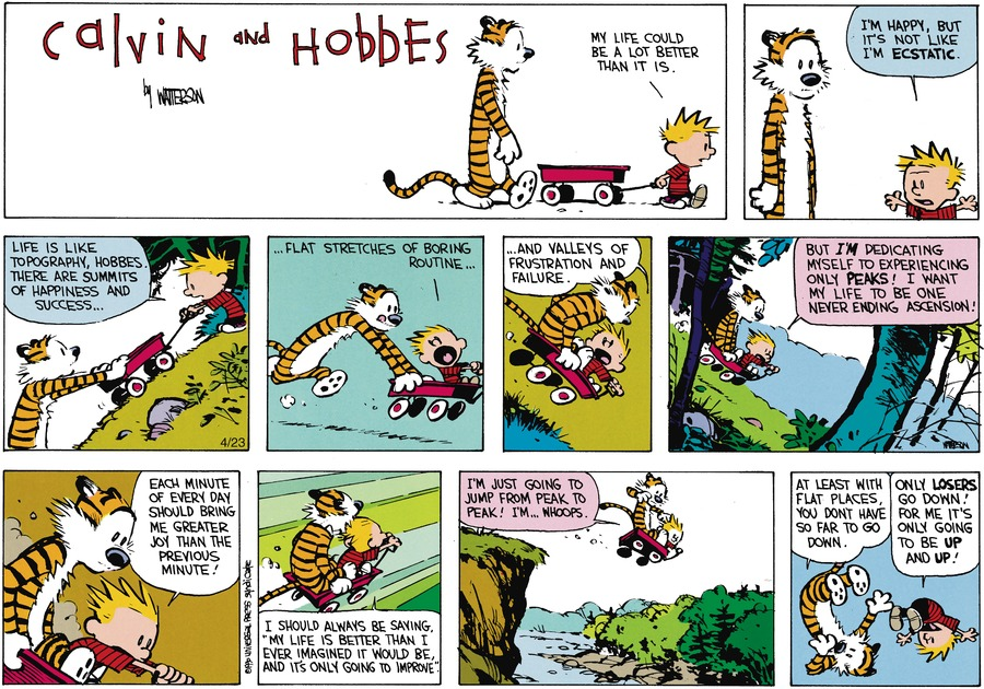 Calvin and Hobbes Comic Strip for June 10, 1990
