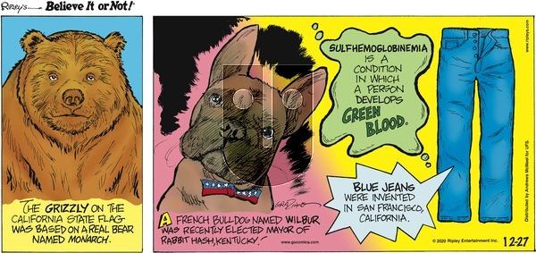 Ripley's Believe It or Not on Sunday December 27, 2020 Comic Strip