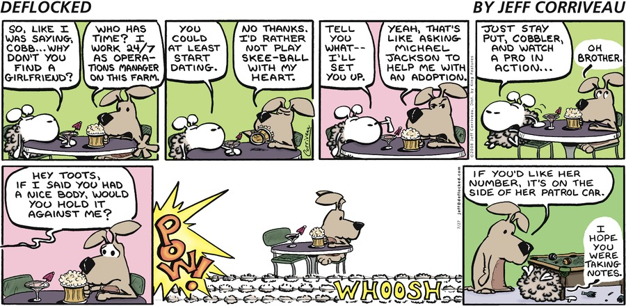 DeFlocked Comic Strip for July 27, 2008