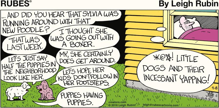 Rubes Comic Strip for September 18, 2016