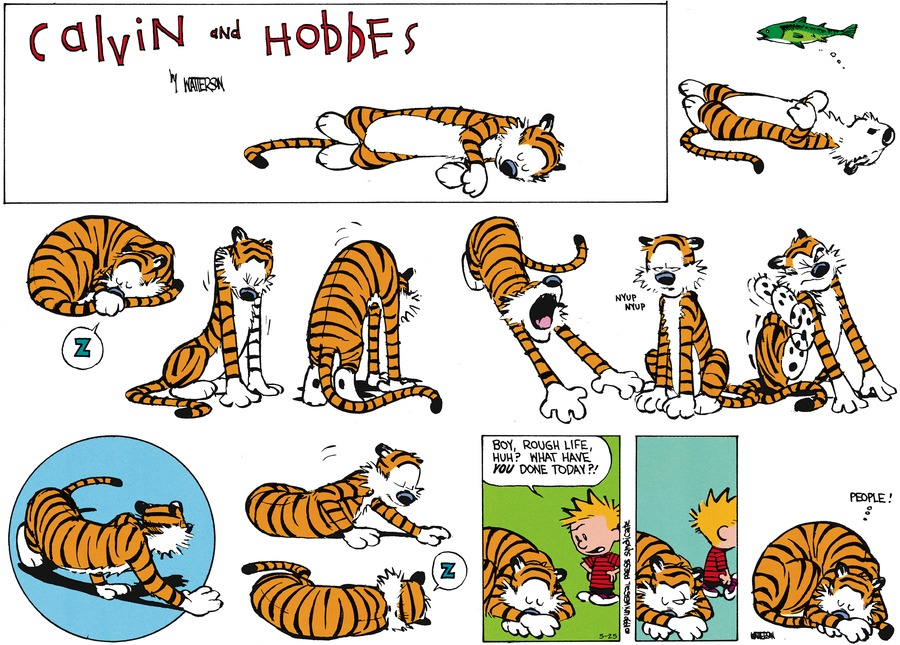 Calvin and Hobbes Comic Strip for May 25, 2014