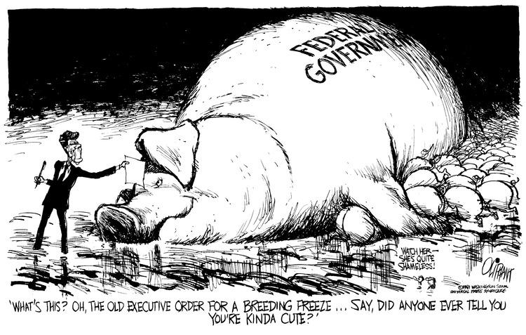 Pat Oliphant Comic Strip for January 18, 1981