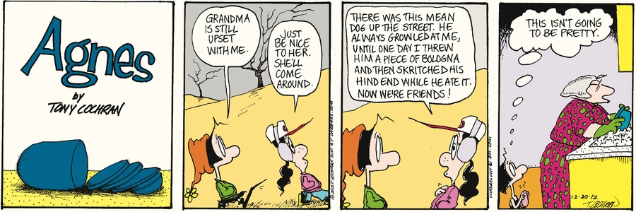 Agnes for Dec 30, 2012 Comic Strip