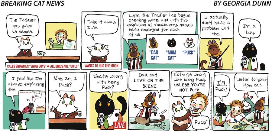 Breaking Cat News Comic Strip for February 03, 2019