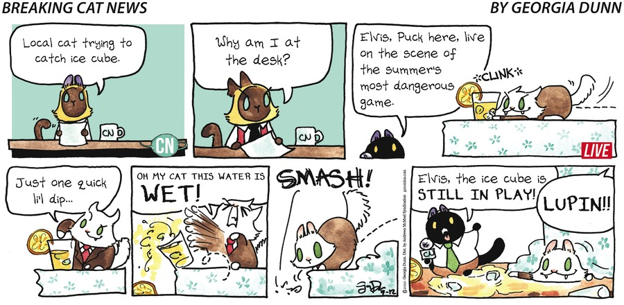 Breaking Cat News Comic Strip for July 12, 2020