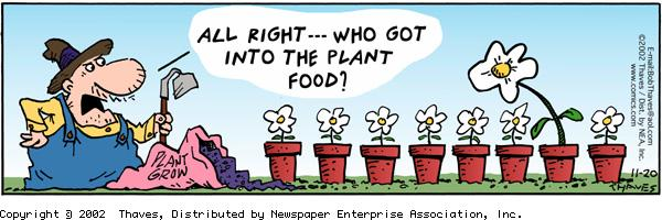 """All right...who got into the plant food?""
