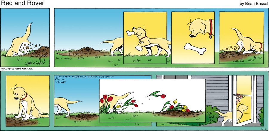 Red and Rover Comic Strip for April 14, 2019