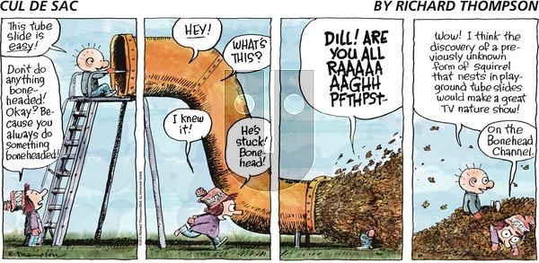 Cul de Sac on Sunday November 28, 2010 Comic Strip