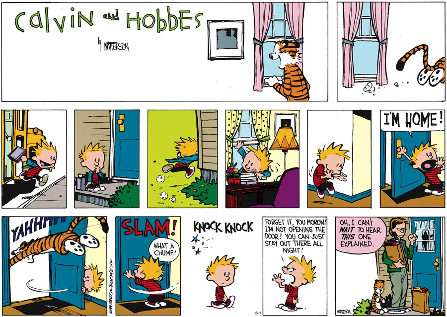Calvin and Hobbes Comic Strip for June 01, 2014