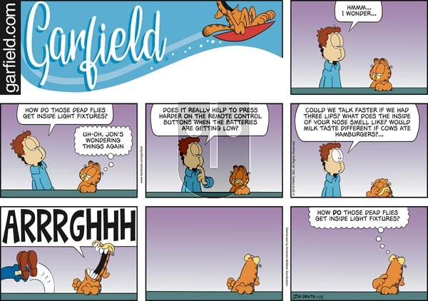 Garfield on Sunday January 13, 2019 Comic Strip