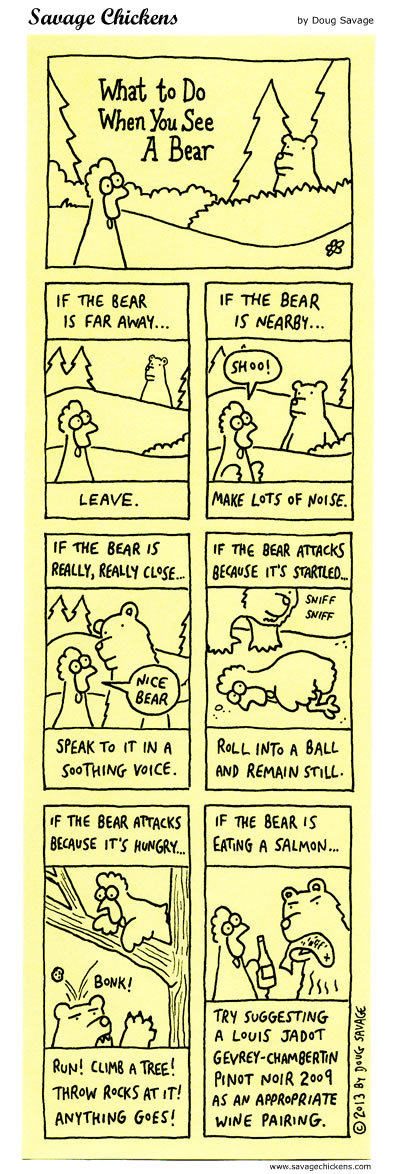 What to do when you see a bear.
