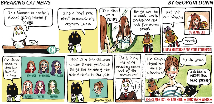 Breaking Cat News Comic Strip for November 25, 2018