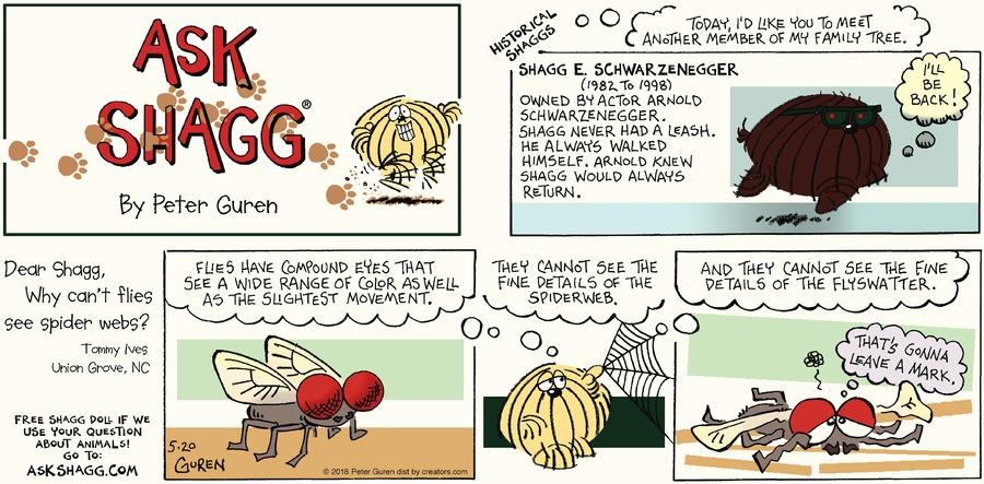 Ask Shagg by Peter Guren