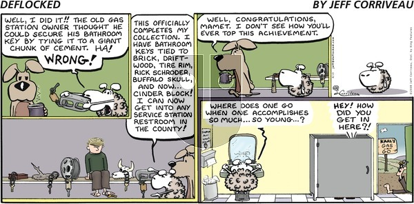 DeFlocked - Sunday August 10, 2008 Comic Strip