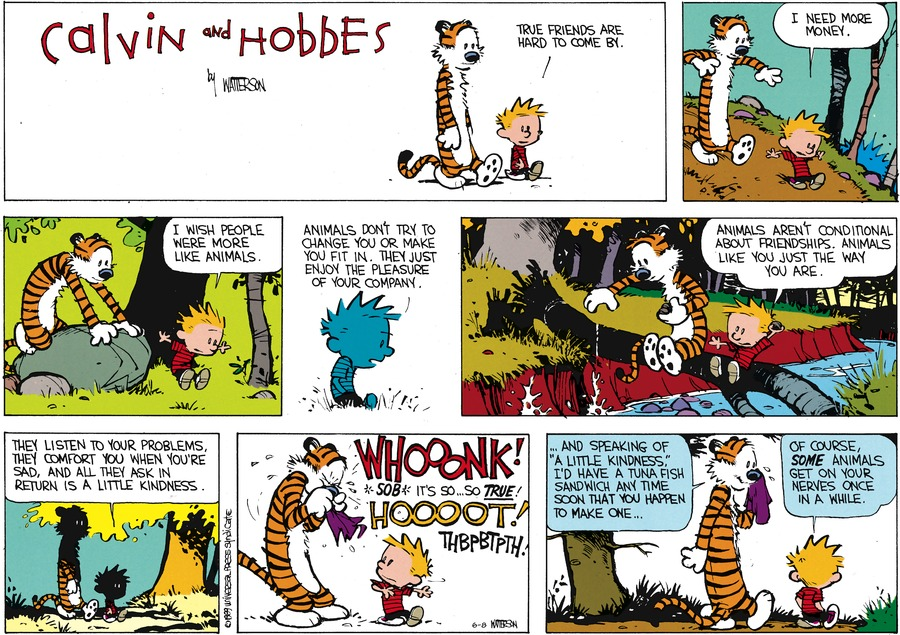 Calvin and Hobbes Comic Strip for June 08, 2014