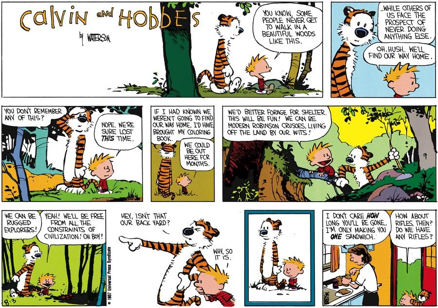 Calvin and Hobbes Comic Strip for September 06, 1987