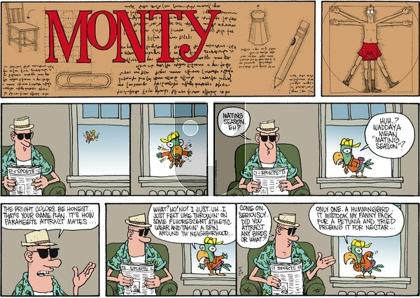 Monty on Sunday May 29, 2016 Comic Strip