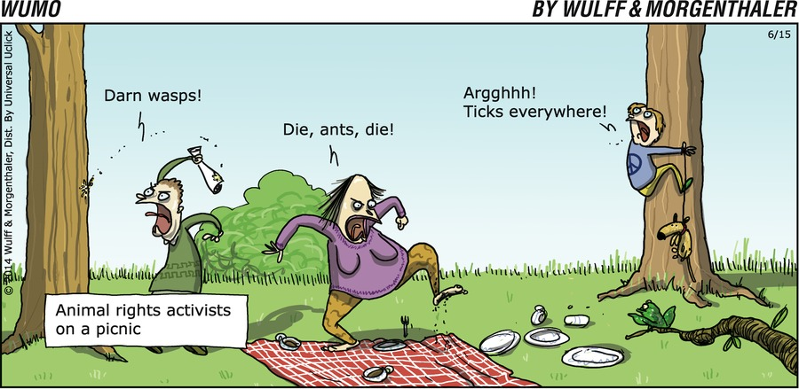 Darn wasps!