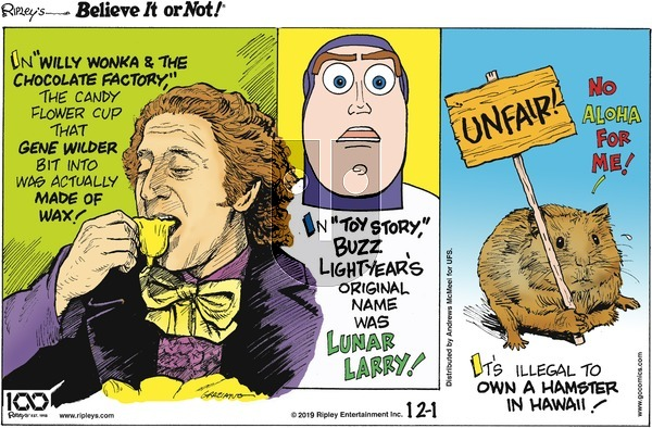Ripley's Believe It or Not on Sunday December 1, 2019 Comic Strip