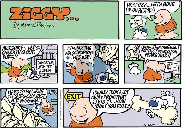 Ziggy on Sunday January 24, 2021 Comic Strip