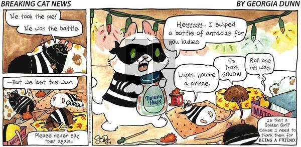 Breaking Cat News on Sunday December 1, 2019 Comic Strip