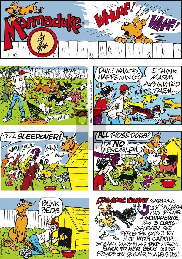 Marmaduke on Sunday May 29, 2016 Comic Strip