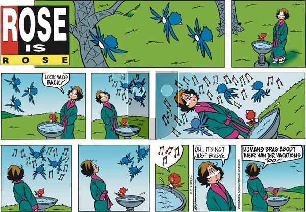 Rose is Rose - Sunday March 17, 2019 Comic Strip