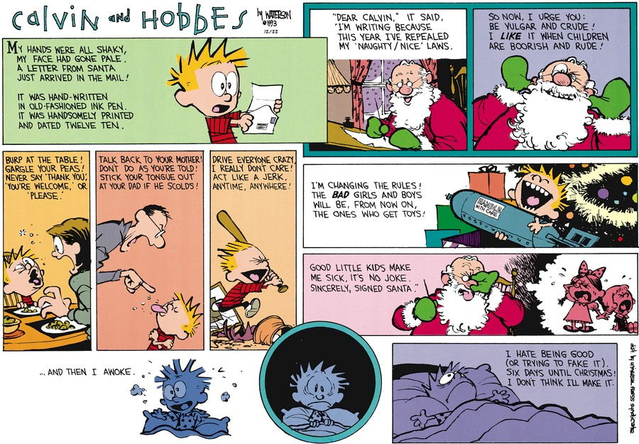Calvin and Hobbes Comic Strip for December 22, 2013