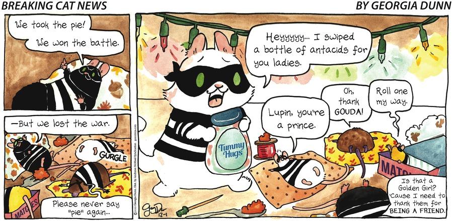 Breaking Cat News Comic Strip for December 01, 2019