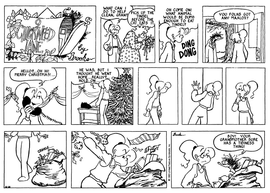 9 Chickweed Lane for Dec 26, 1993 Comic Strip