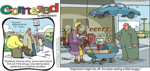 Cornered on Sunday August 31, 2014 Comic Strip