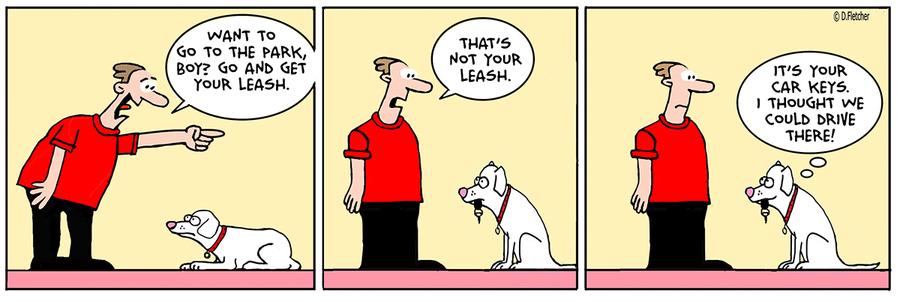 Crumb Comic Strip for February 20, 2020