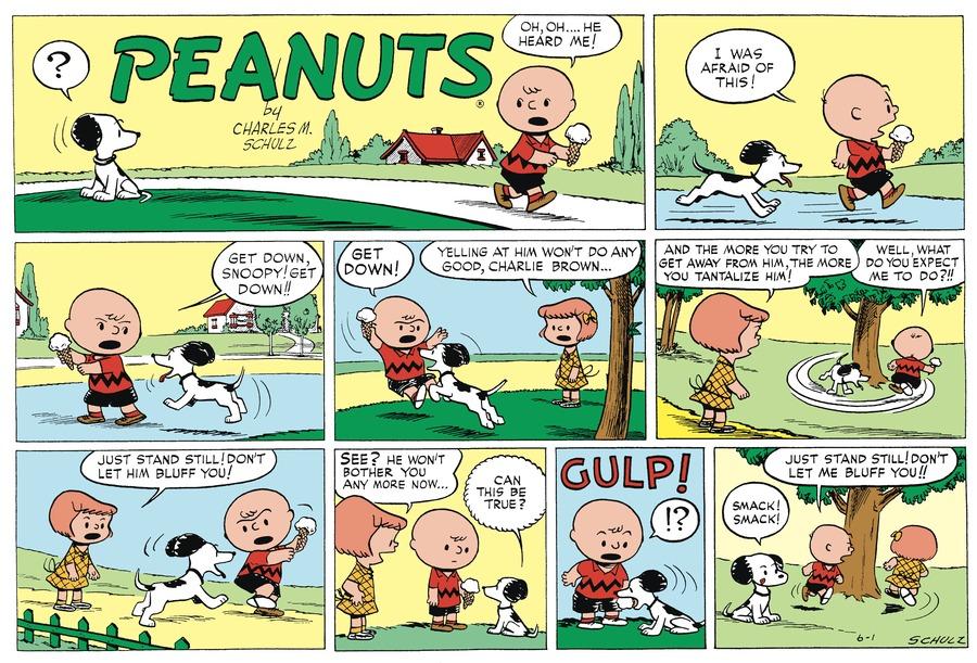 Peanuts Begins Comic Strip for September 04, 2016