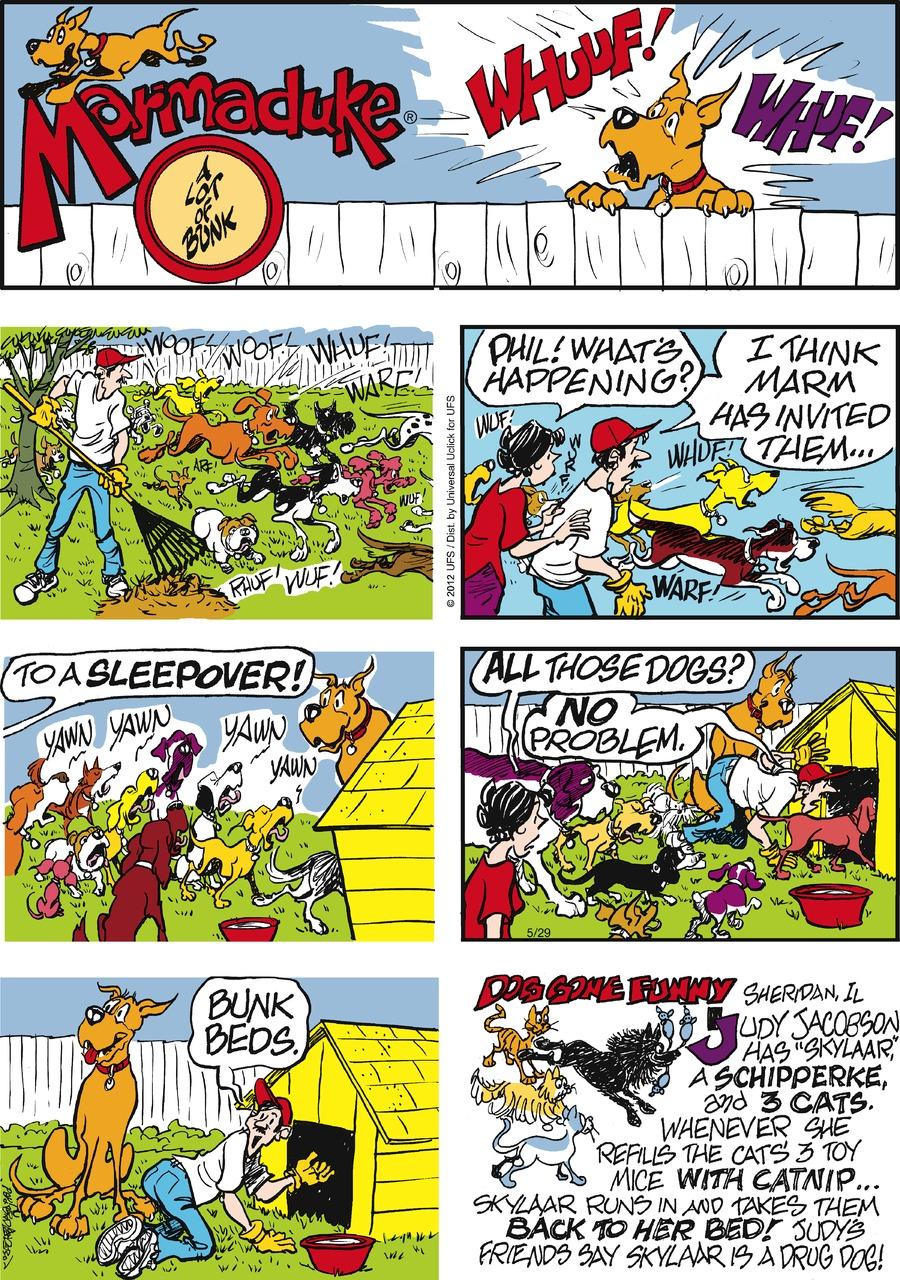 Marmaduke for May 29, 2016 Comic Strip