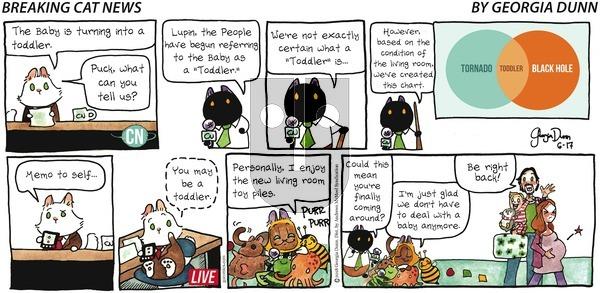 Breaking Cat News on Sunday June 17, 2018 Comic Strip