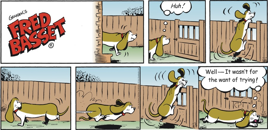 Fred Basset Comic Strip for January 24, 2021