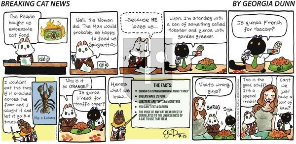 Breaking Cat News on Sunday July 15, 2018 Comic Strip