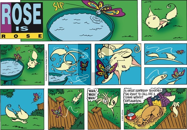 Rose is Rose on Sunday July 5, 2020 Comic Strip