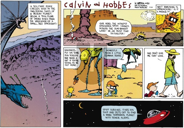 Calvin and Hobbes - Sunday July 28, 2013 Comic Strip