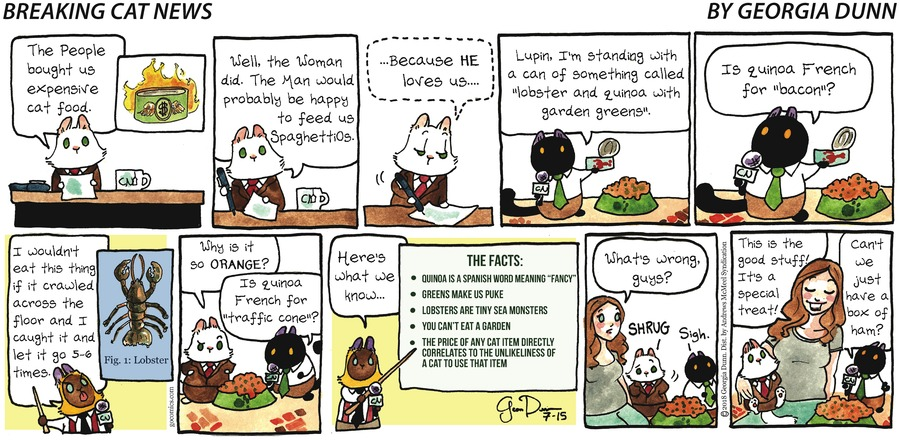 Breaking Cat News for Jul 15, 2018 Comic Strip