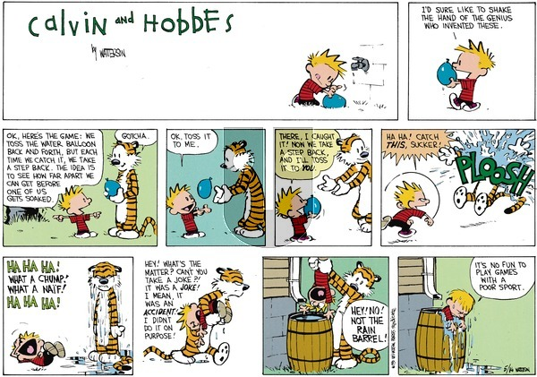 Calvin and Hobbes - Sunday July 1, 1990 Comic Strip